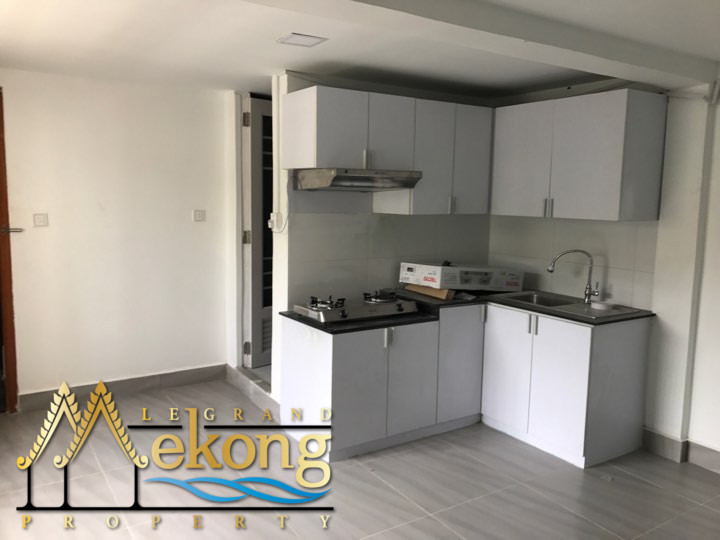 Renovated apartment for rent near Russian Market | LGM247