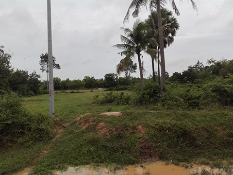 2 hectares for sale