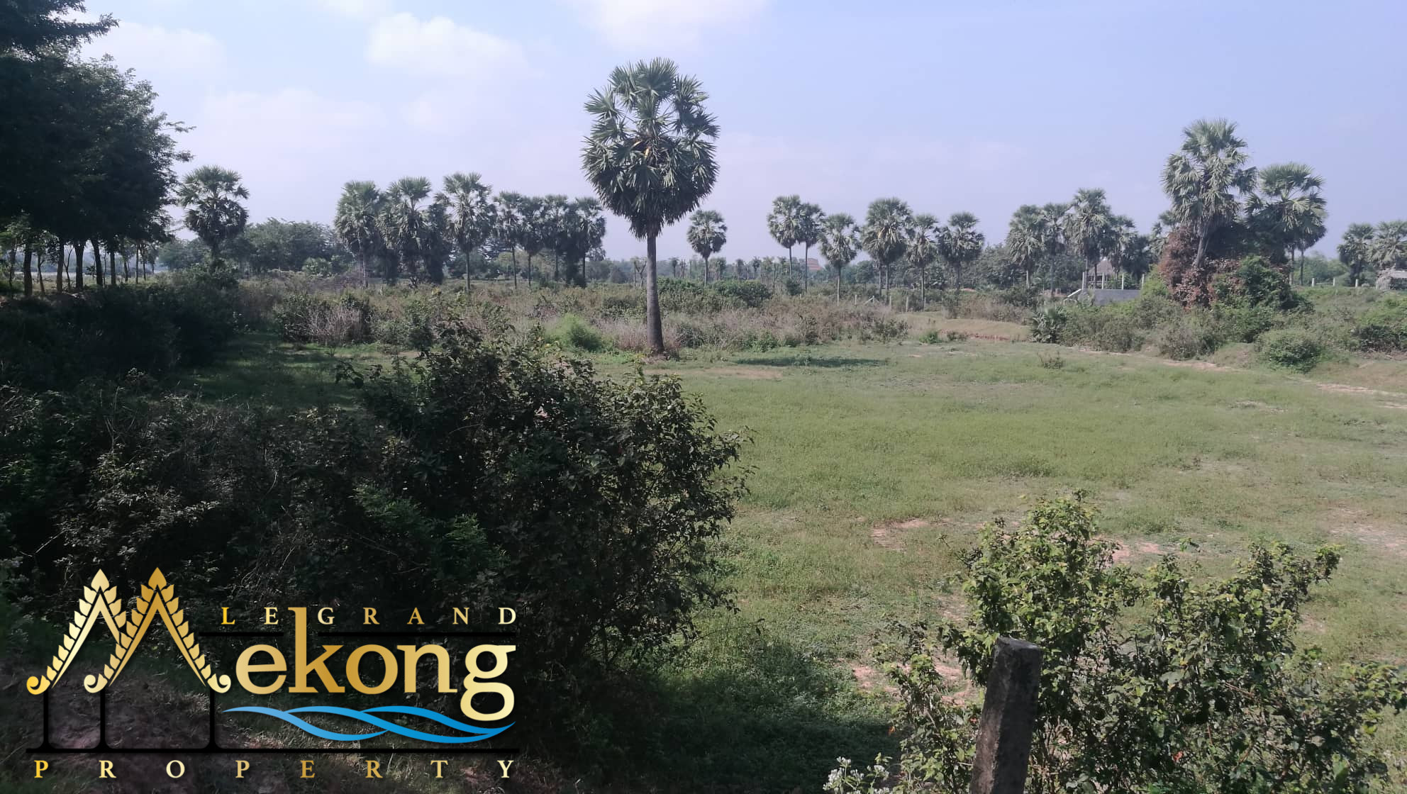 1480m2 Land For Sale on Koh Dach | LGM343