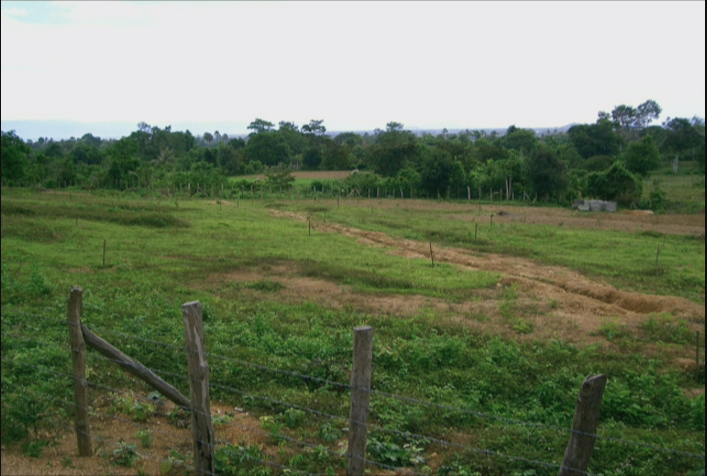 8000m2 of land for sale in Kep | ដីលក់ទំហំ 8 000 ម៉ែត្រការេ នៅកែប